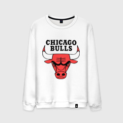 Мужской свитшот хлопок Chicago bulls logo