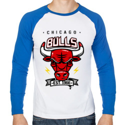 Купить Chicago bulls swag