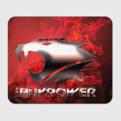 IBUYPOWER team