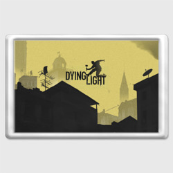 Магнит 45*70 Dying Light