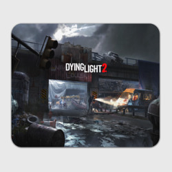 DYING LIGHT2
