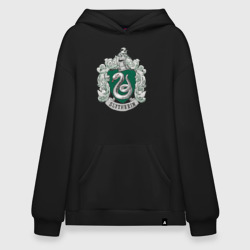 Coat of Slytherin