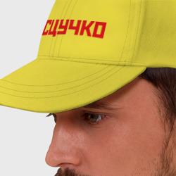 Сцучко