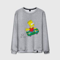 Бард скейтер
