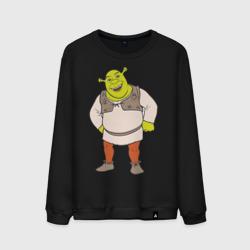 Shrek (2)