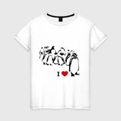 Я люблю пингвинов
