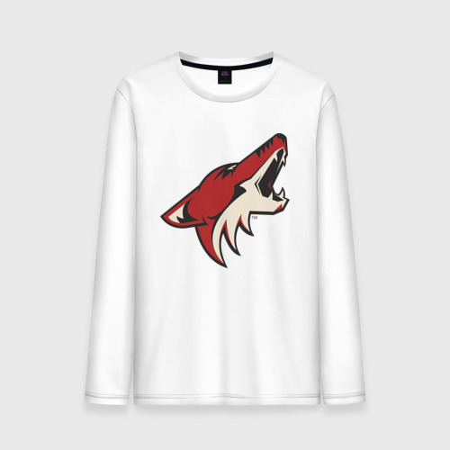Phoenix Coyotes