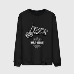 Harley-davidson (3)
