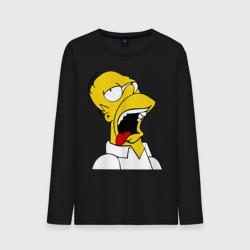 Gomer Simpson (2)