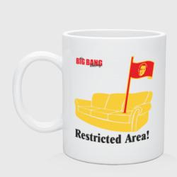 Restricted Area! BigBangTheory