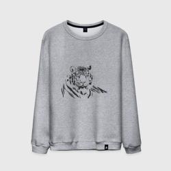 Тигр (9)