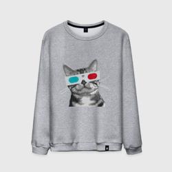 Кот в стереоочках