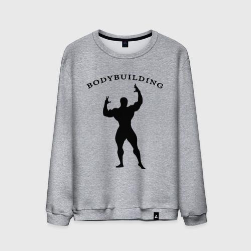 Мужской свитшот хлопок  Фото 01, Bodybuilding (2)