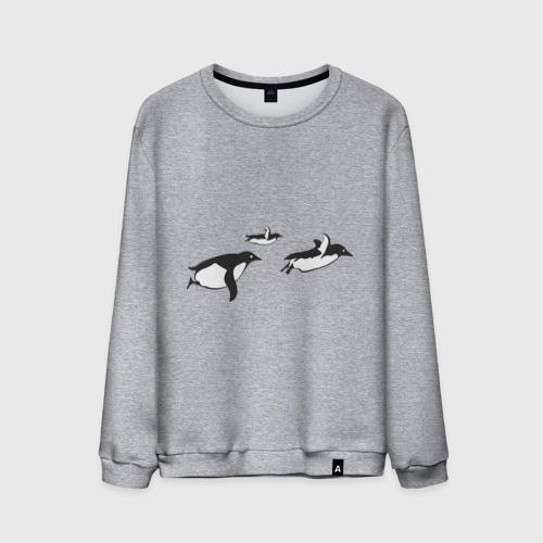 Пингвины улетают