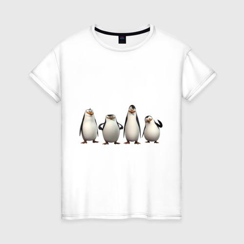 Пингвины Мадагаскар