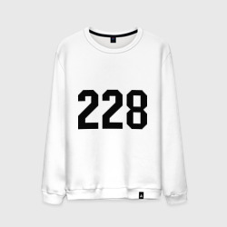 228 (6)