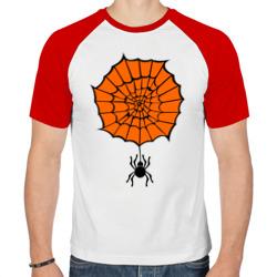 Pauk orange