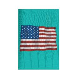 Америка флаг (5)