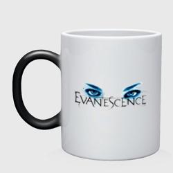 Evanescence (5)