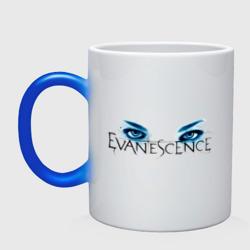 Evanescence (7)