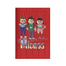 Микрос персонажи