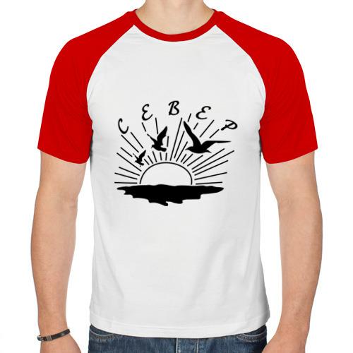Мужская футболка реглан  Фото 01, север
