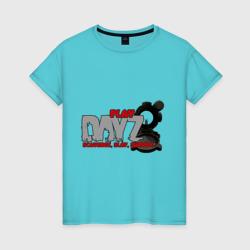 DayZ scavence, slay, survive