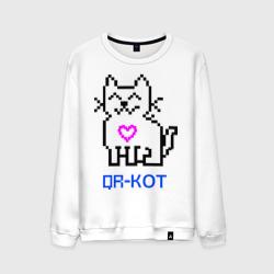 QR -кот