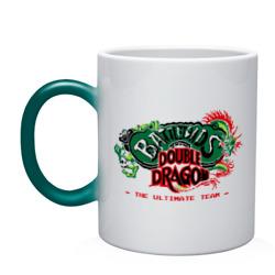 BattleToads Double Dragon