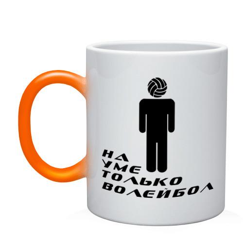 Я волейболист - на уме только волейбол
