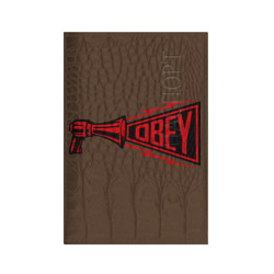 рупор OBEY