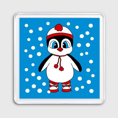 Пингвиненок в снегу