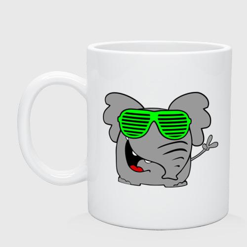 Слон в очках