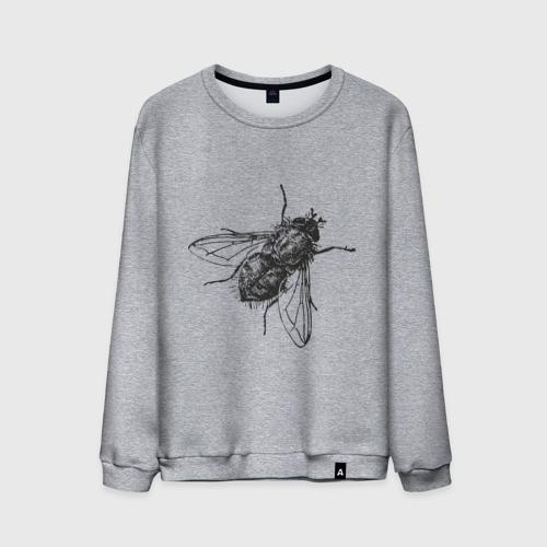Мужской свитшот хлопок  Фото 01, Назойливая муха