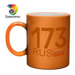 Ульяновская область-173
