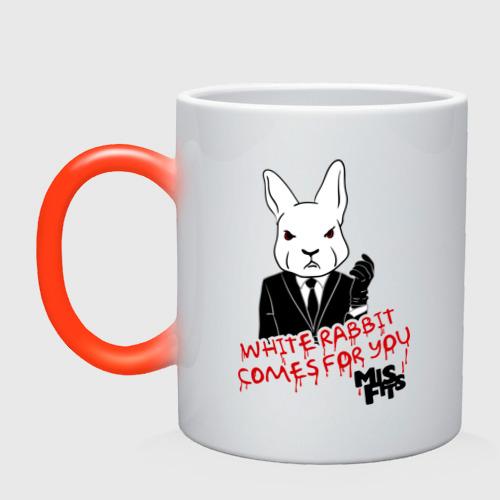 Rabbit misfits