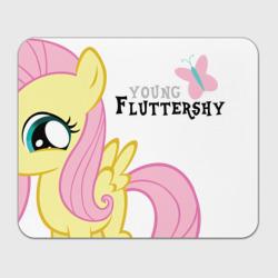Nice Fluttershy