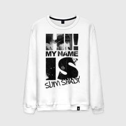 Hi. My name is slim shady