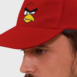 Red - красная птица - интернет магазин Futbolkaa.ru