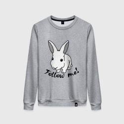 Следуй за белым кроликом.