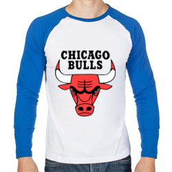 Chicago bulls logo - интернет магазин Futbolkaa.ru