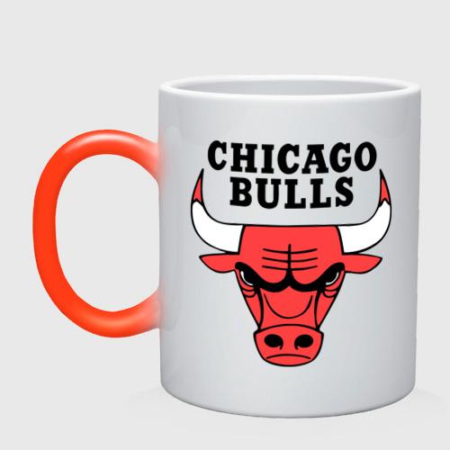 Кружка хамелеон Chicago bulls logo