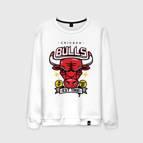 Chicago bulls. Est 1966