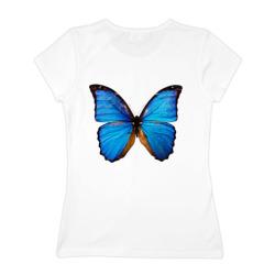 Голубые крылья бабочки