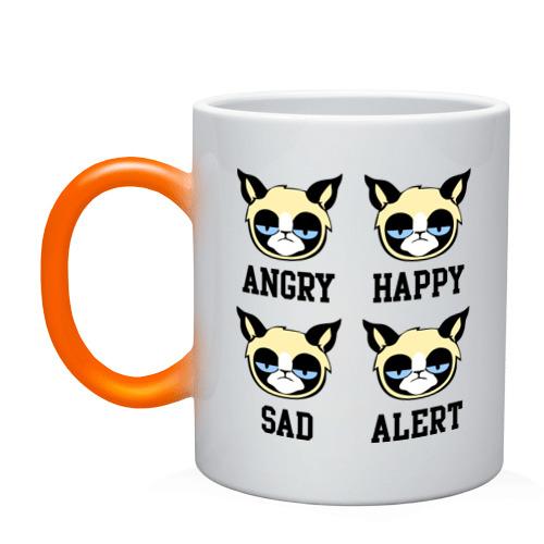 Mood Cat