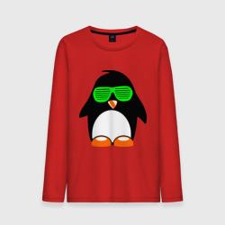 Пингвин в очках жалюзи