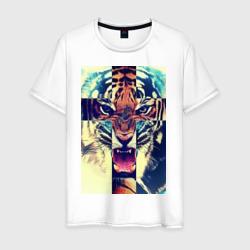 SWAG tiger