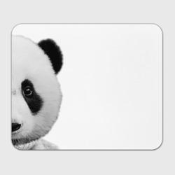 Панда в свитере