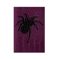 Паук (spider)
