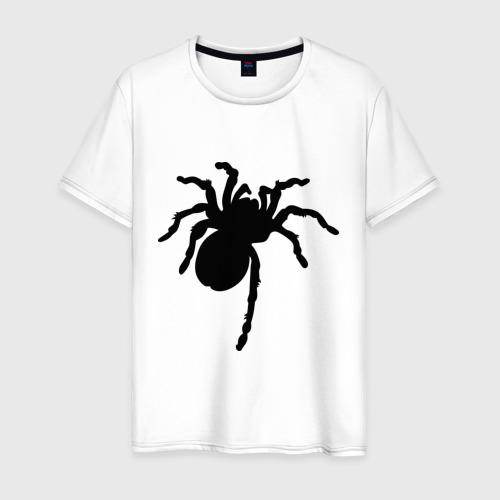 Мужская футболка хлопок Паук (spider)